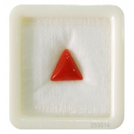 Natural Red Coral Triangular 4+ 2.45ct