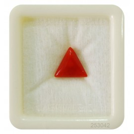 Natural Red Coral Triangular 4+ 2.65ct