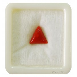 Astrological Coral Triangular 4+ 2.7ct