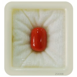 Astrological Coral Fine 14+ 8.75ct