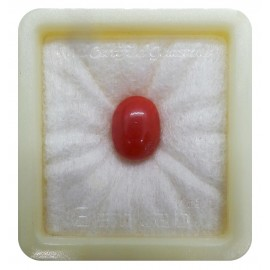 Certified Red Coral Premium 7+ 4.35ct