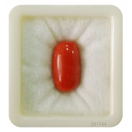 Coral Gemstone Std 11 CT (18.33 Ratti)
