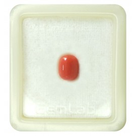 Certified Red Coral Premium 4+ 2.7ct