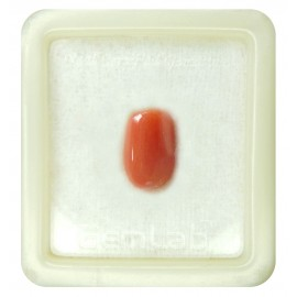 Certified Red Coral Premium 7+ 4.5ct