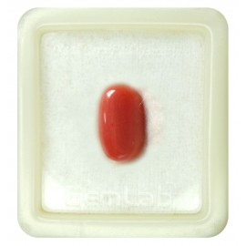 Certified Red Coral Premium 10+ 6.3ct
