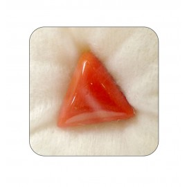 Natural Red Coral Triangular 10+ 6.05ct