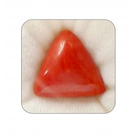 Natural Red Coral Triangular 21+ 12.6ct