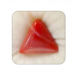 Natural Red Coral Triangular 21+ 12.95ct