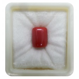 Astrological Coral Fine 12+ 7.6ct