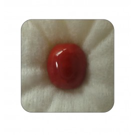 Certified Red Coral Premium 9+ 5.5ct