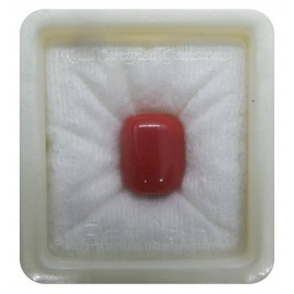 Certified Red Coral Premium 14+ 8.75ct