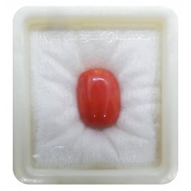 Certified Red Coral Premium 15+ 9.2ct